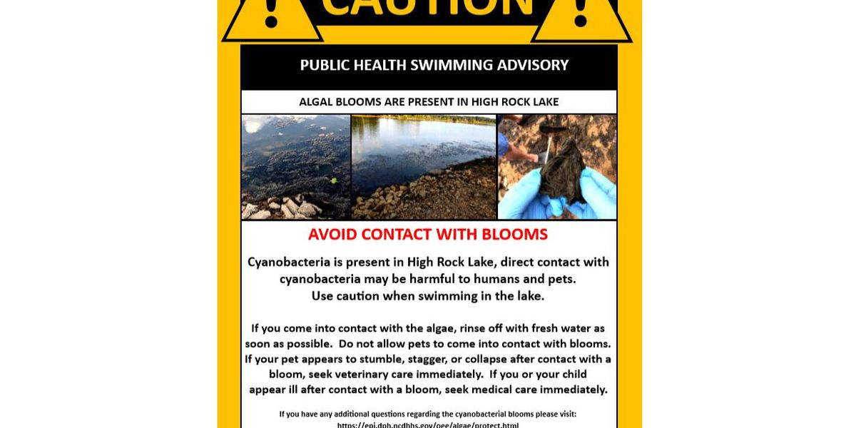 Blue-green algae in High Rock Lake prompts swim advisory