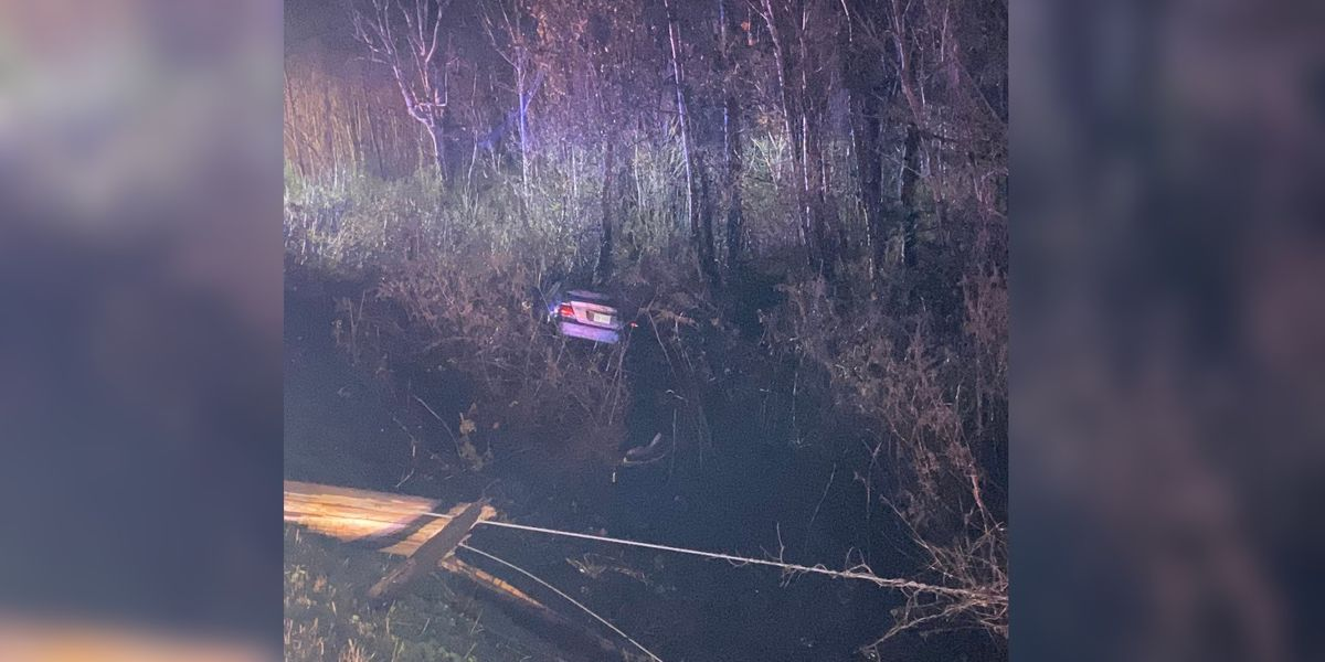 Driver flees scene and car after slamming into power pole, crashing into woods in Harrisburg