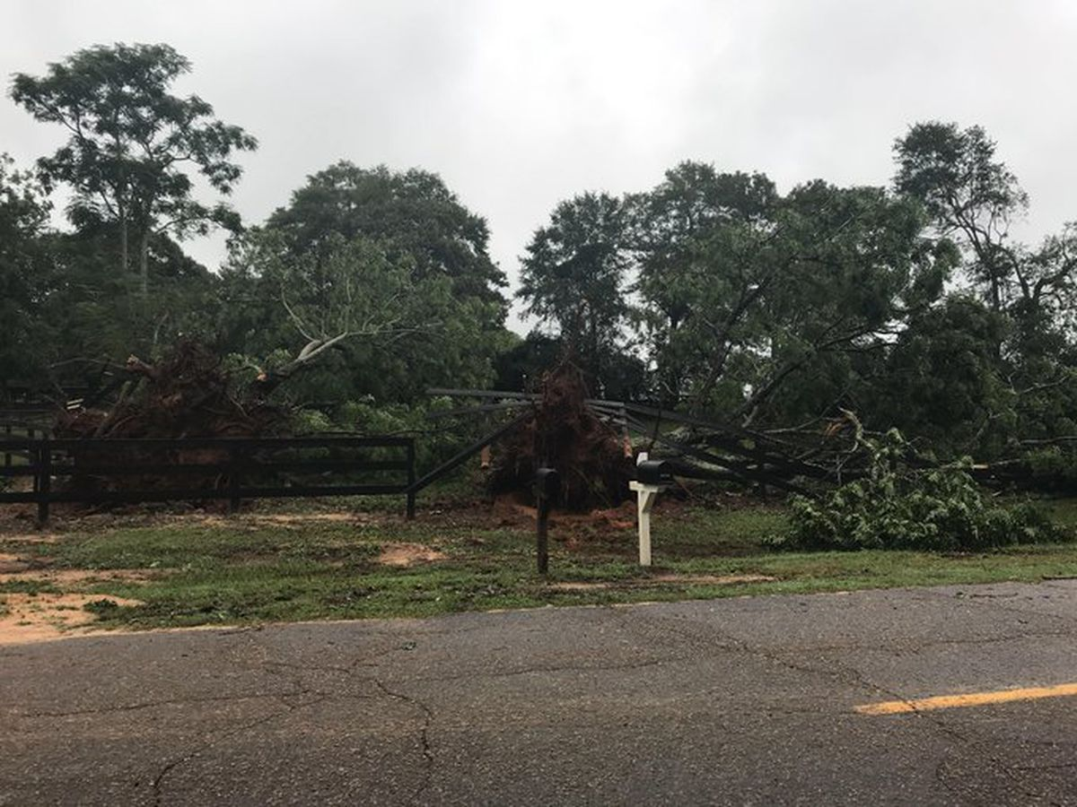 NWS confirms at least 4 tornadoes occurred in the Midlands during Thursday's storms