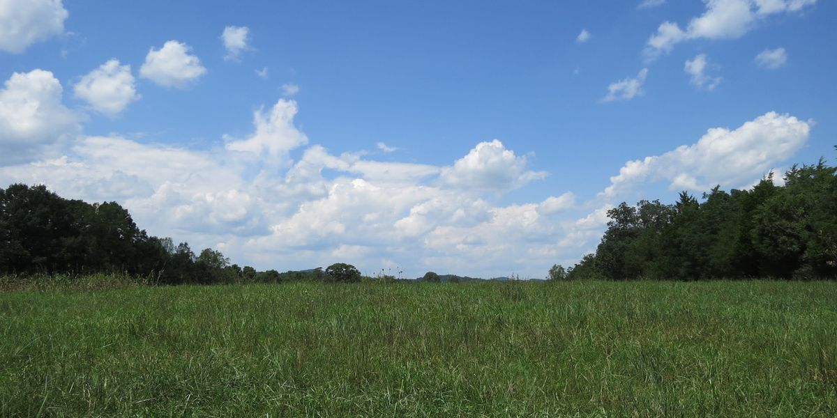 United States Department of Agricultural awards $750,000 to Three Rivers Land Trust to conserve Iredell County farm