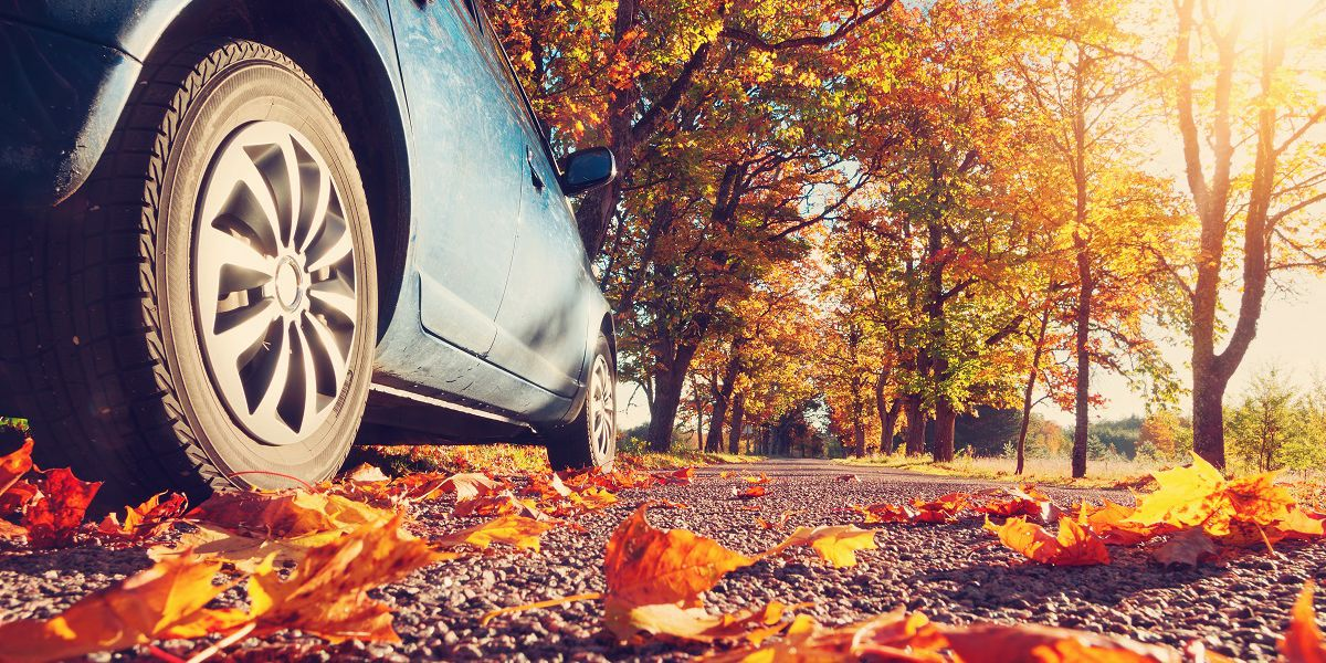 Toyota of N Charlotte's six tips for fall car care