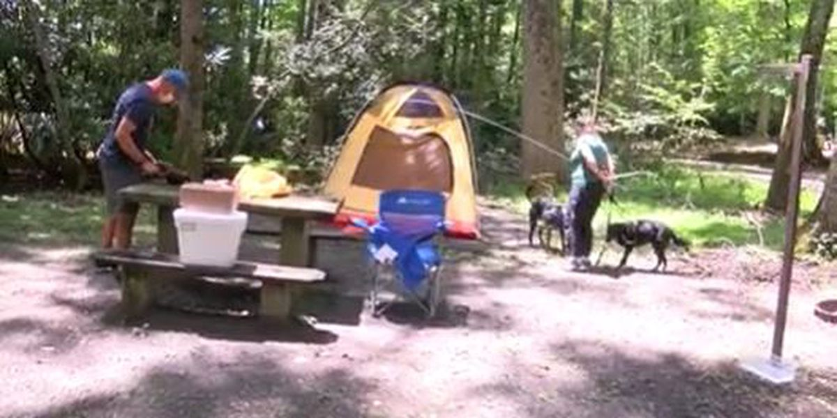 Two campgrounds along the Blue Ridge Parkway open for the the first time this year