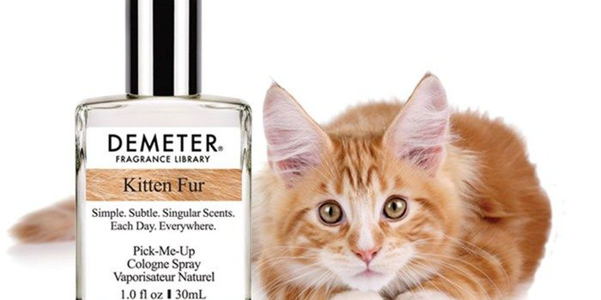The Cat's Meow: Company debuts perfume that smells like kitten fur