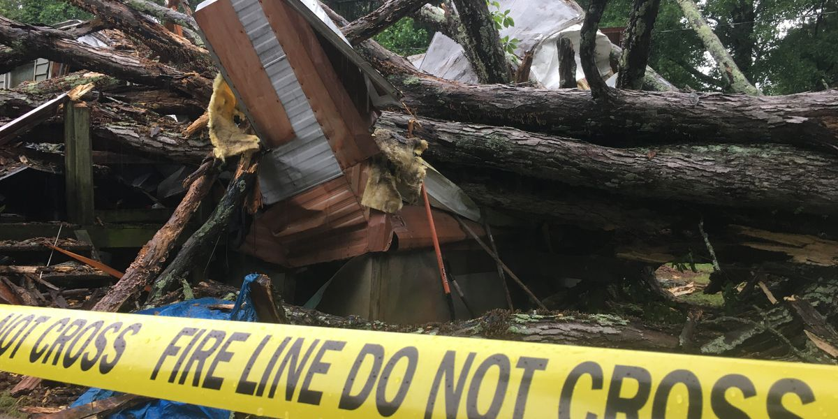 Couple narrowly escapes falling tree that crushed their home
