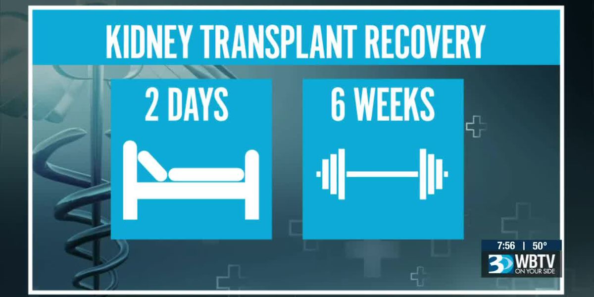 Part 3: The stories of donors and recipients in the organ transplant journey