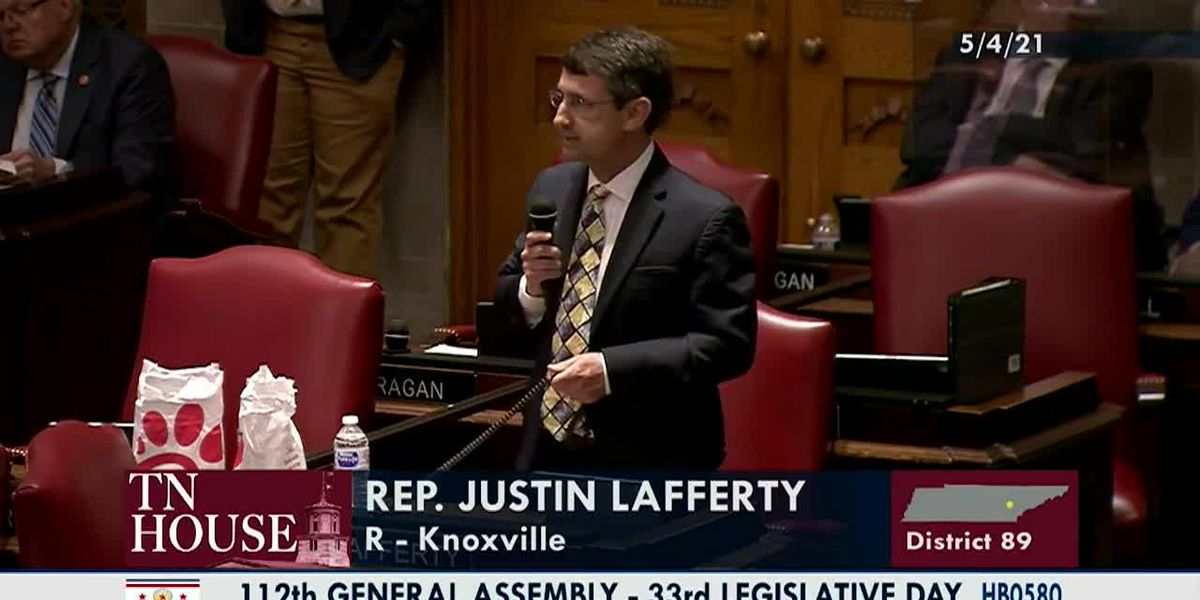 Tenn. lawmaker suggest '3/5 compromise' helped end slavery
