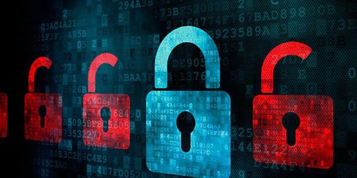 Beyond passwords: Tech companies seek next generation of security