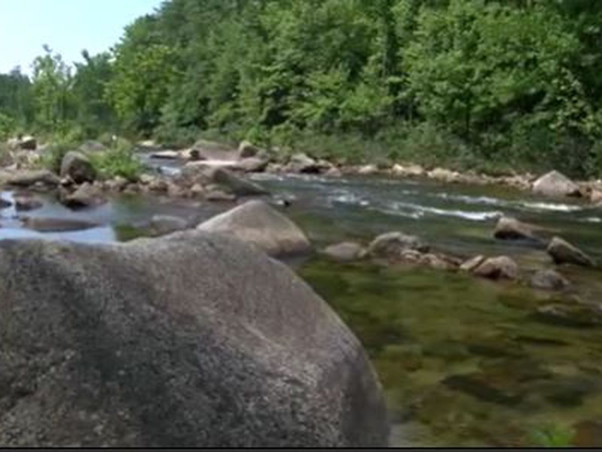 Wilson Creek in Pisgah Forest reopens to the public after 3-month closure