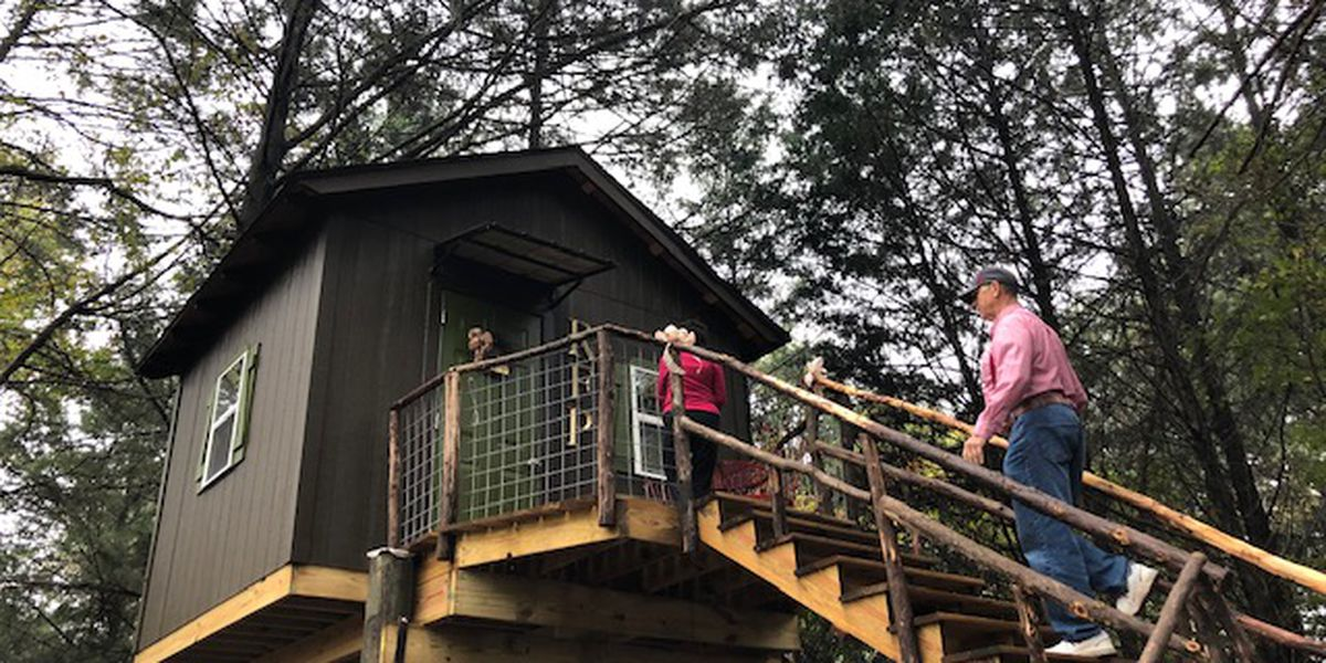 Husband of the year builds wife second penthouse in a tree