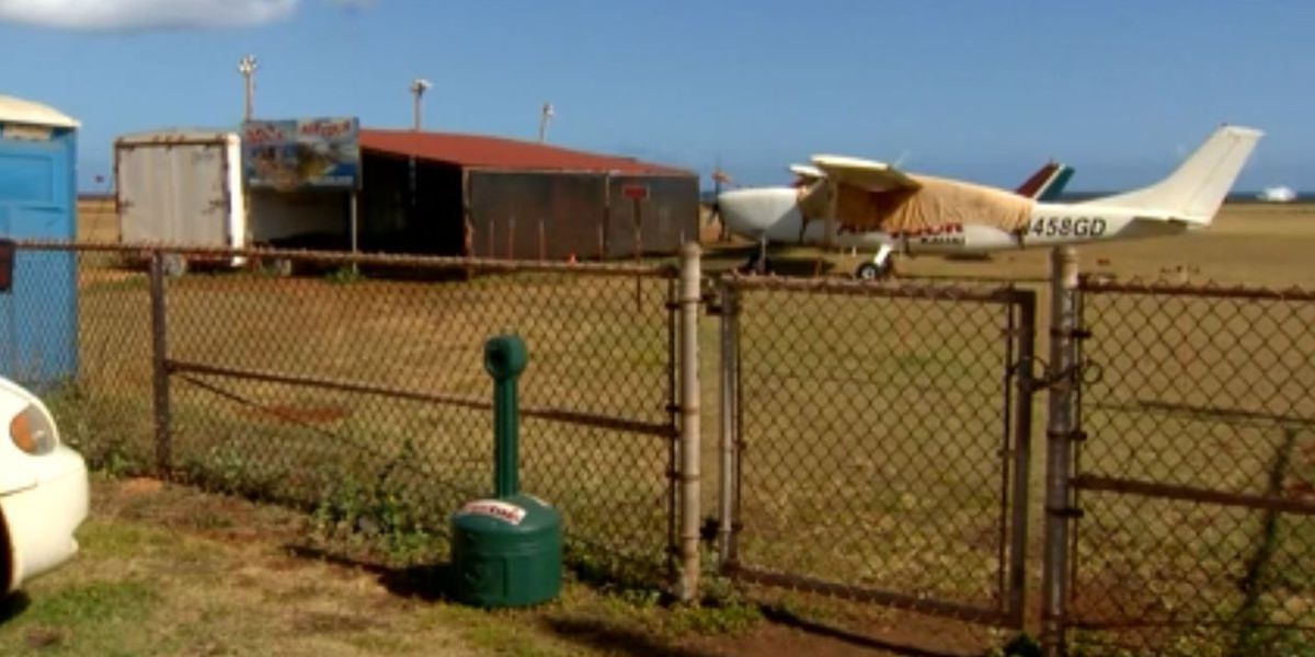 Skydiver recalls pilot saying 'get out of the plane now' after mid-air mechanical scare