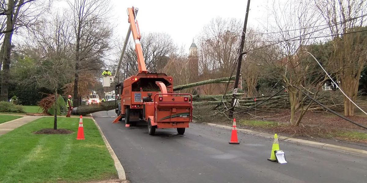 Fallen tree leaves elementary school, 1,300 without power in Myers Park area