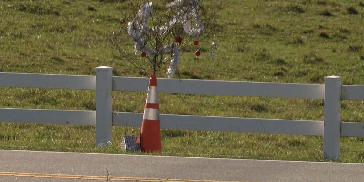 "WHO DID IT? Huntersville's ""Cone Weed"" mysteriously decorated for Christmas"