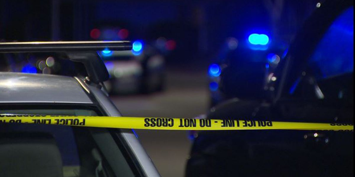 Mother, 7-year-old daughter shot in back during apparent domestic dispute in Lincoln Co.