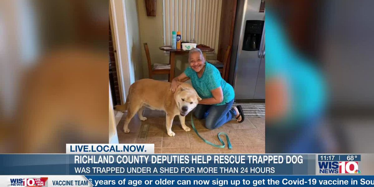 Richland County deputies rescue dog trapped under shed
