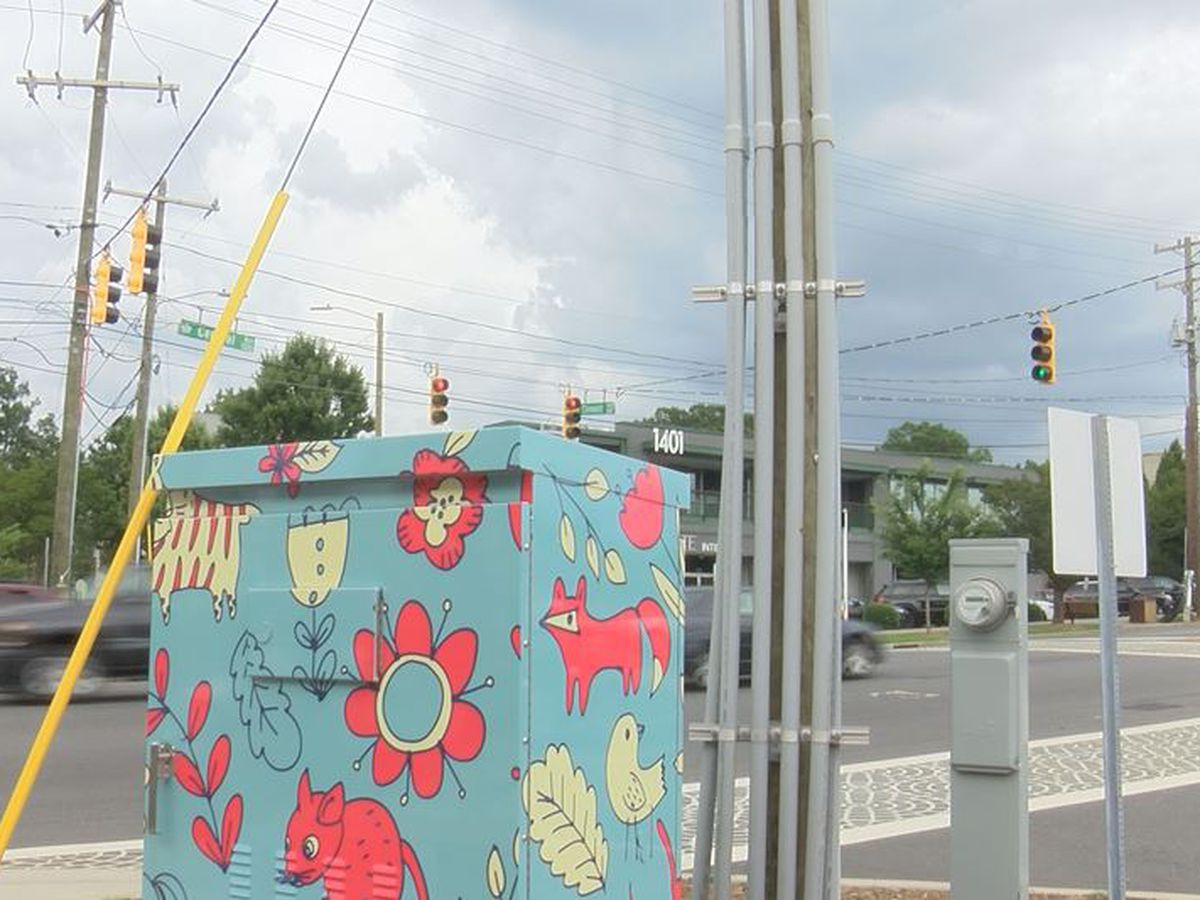 Artists transform Plaza Midwood traffic signal boxes to hold onto 'community culture'