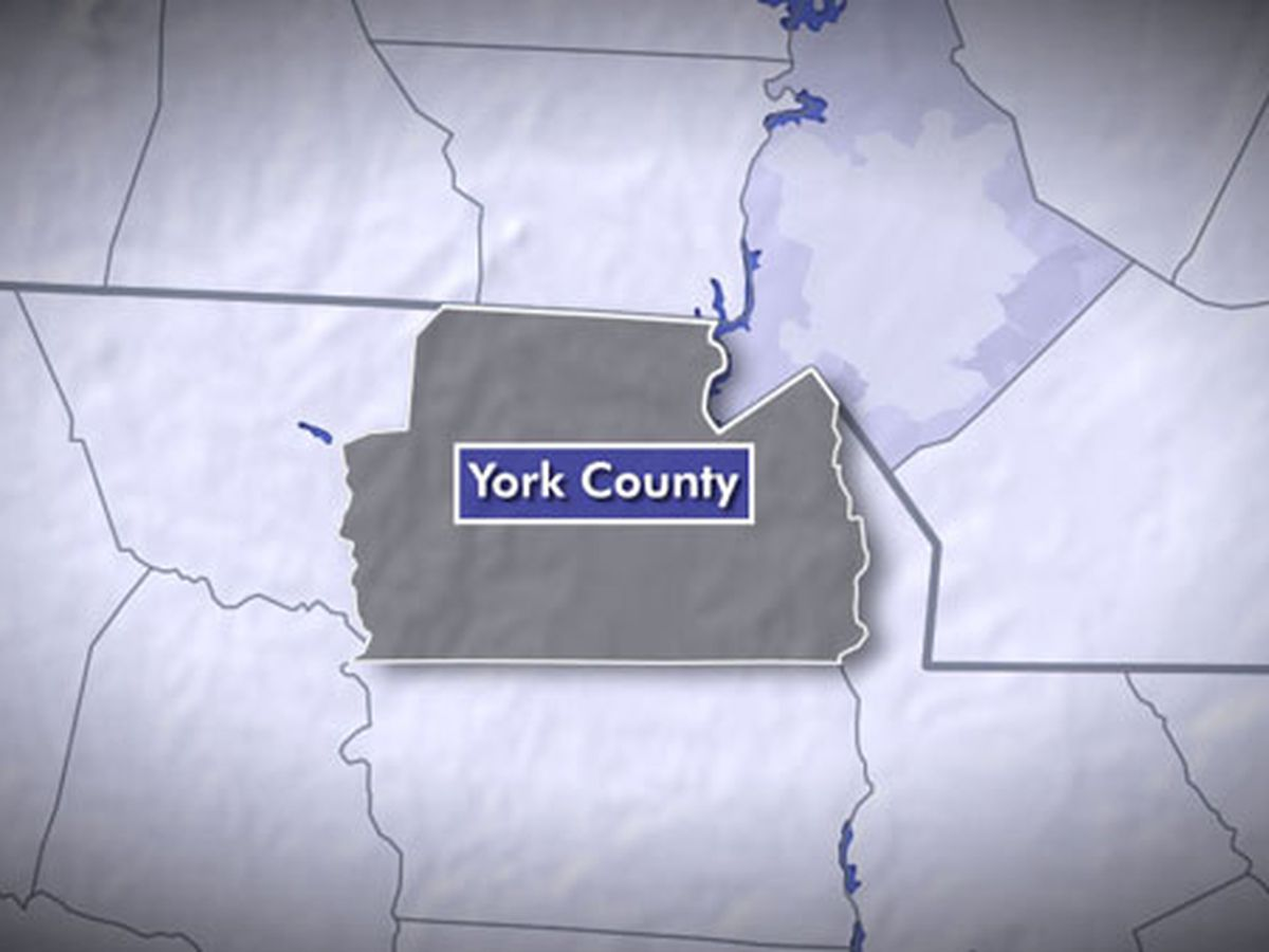 Person dies while in custody in York Co., investigation underway