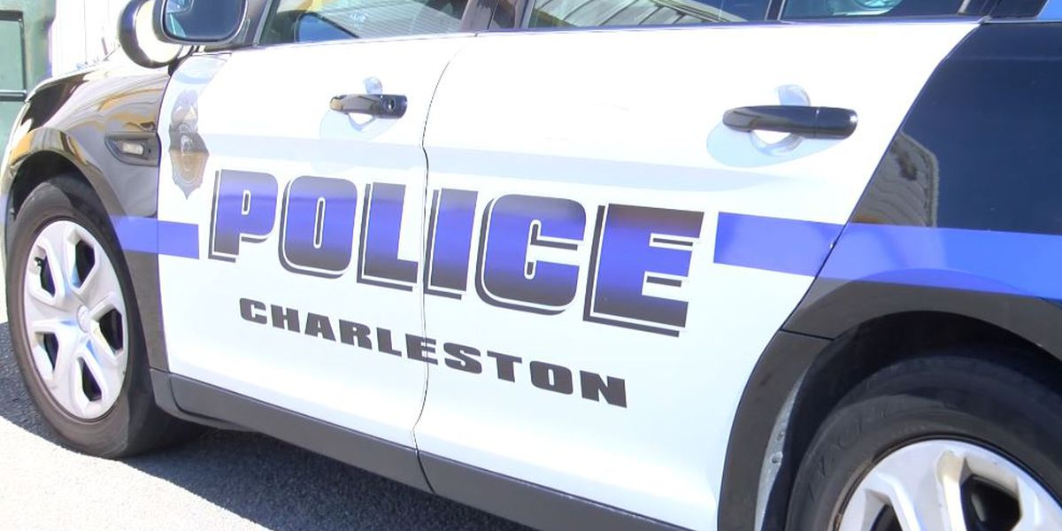 Lawsuit filed against City of Charleston, police department in officer assault captured on video