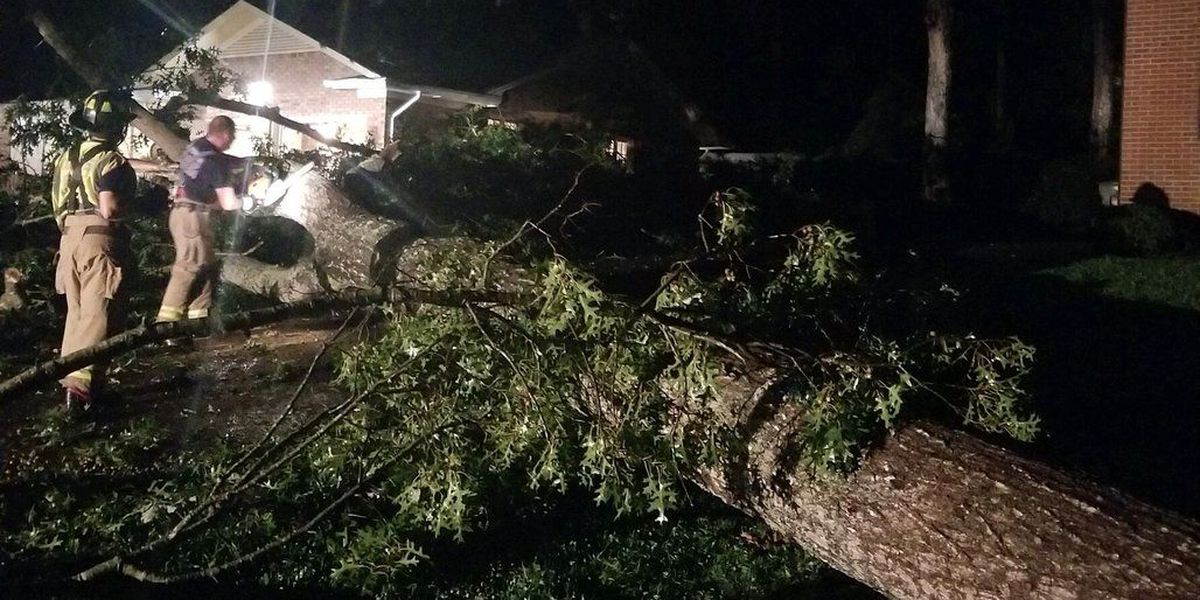 Crews respond after tree falls on house in Conover