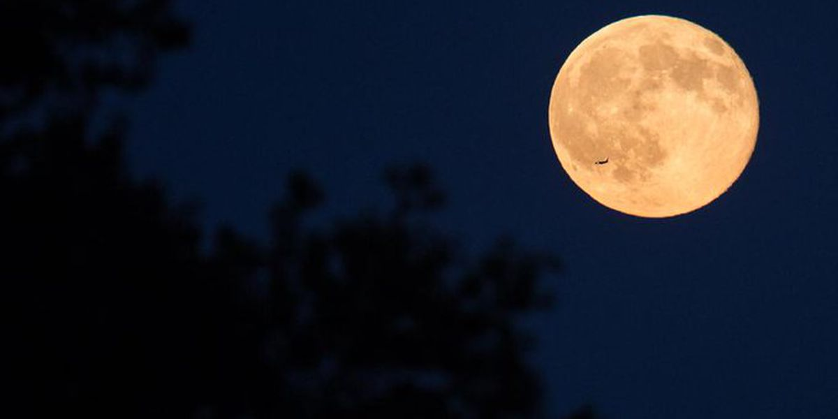 There's a wolf moon this weekend, eclipse, too