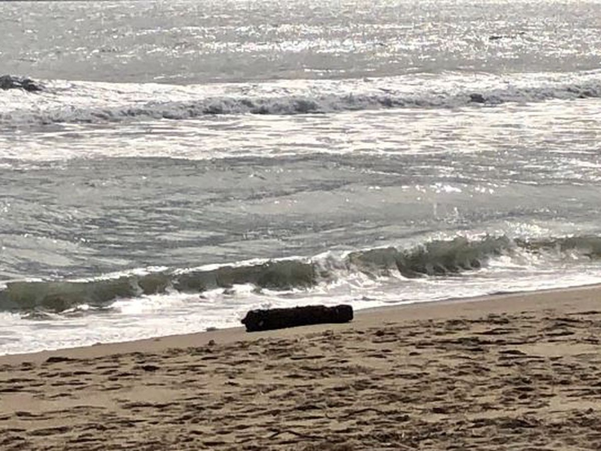 100-pound aerial bomb from World War II era washes ashore near N.C. lighthouse