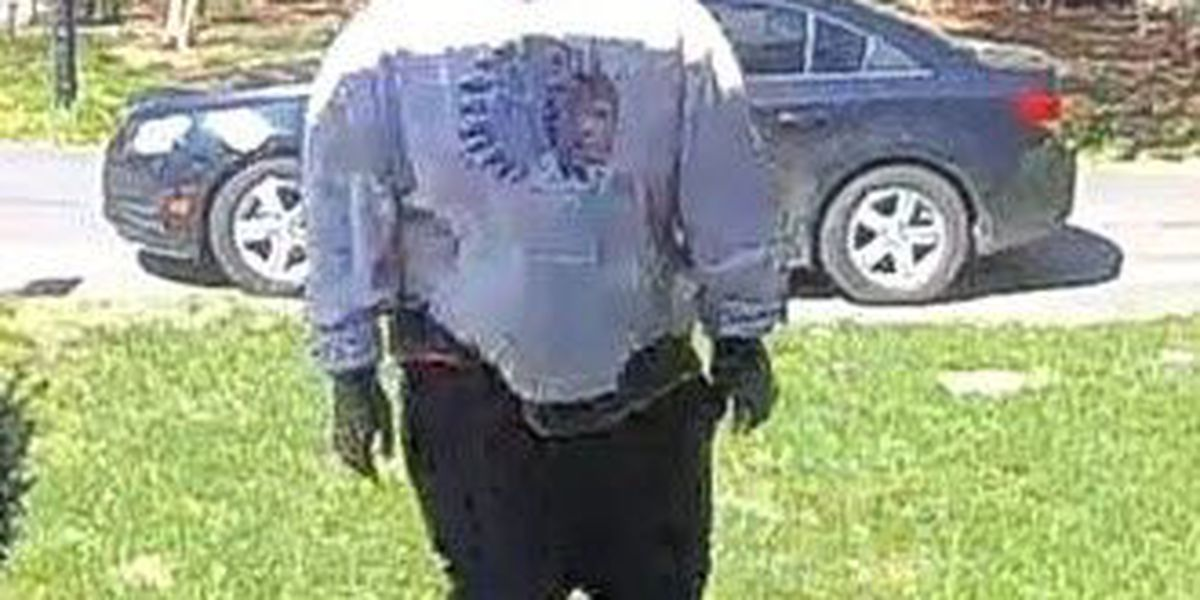 Charlotte police trying to ID front porch package thief