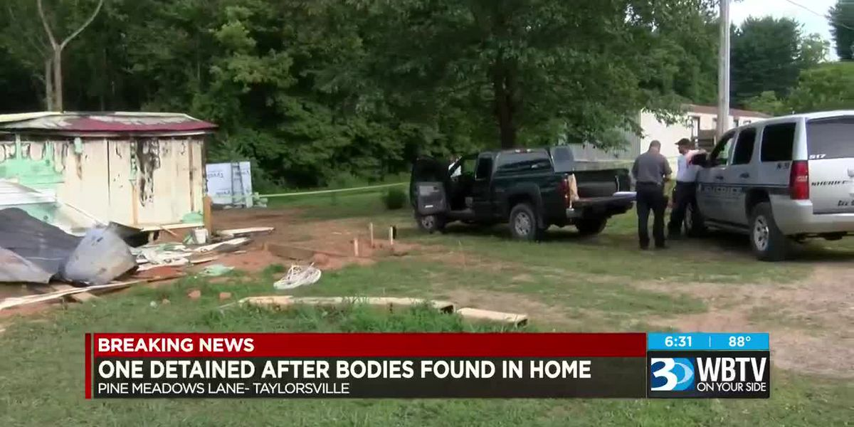 One detained after bodies found in home