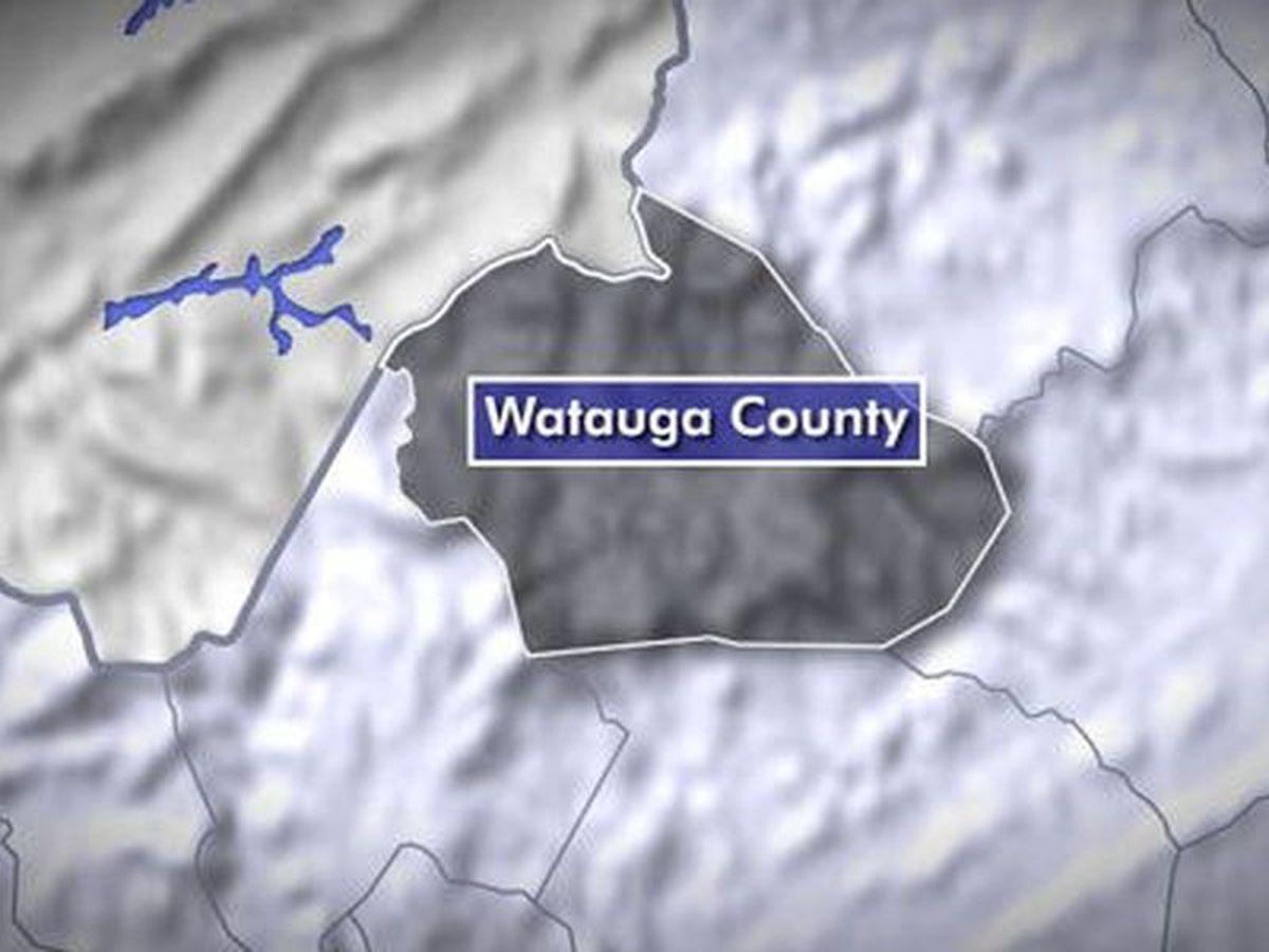 Rabies case confirmed in Watauga County