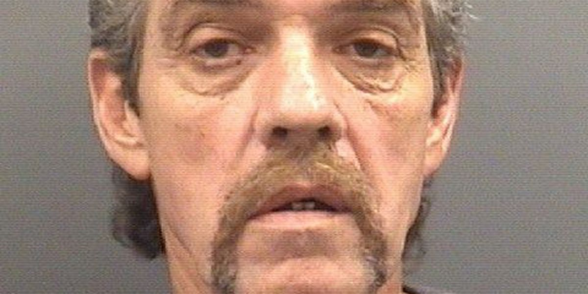 Long list of sex charges against local man