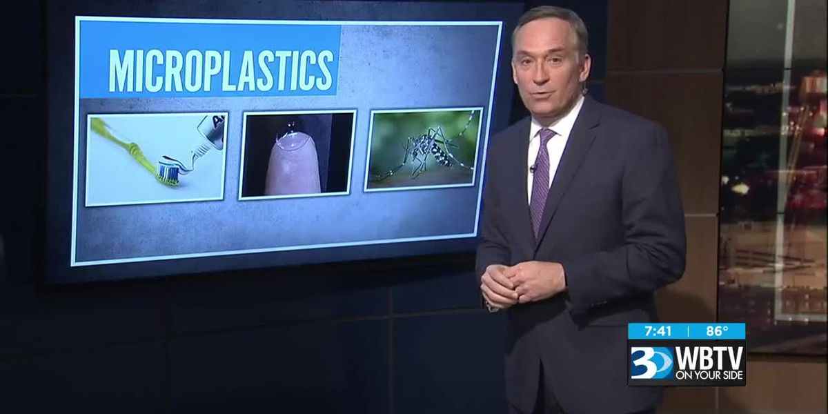 3 Things: Mosquitos eating plastic