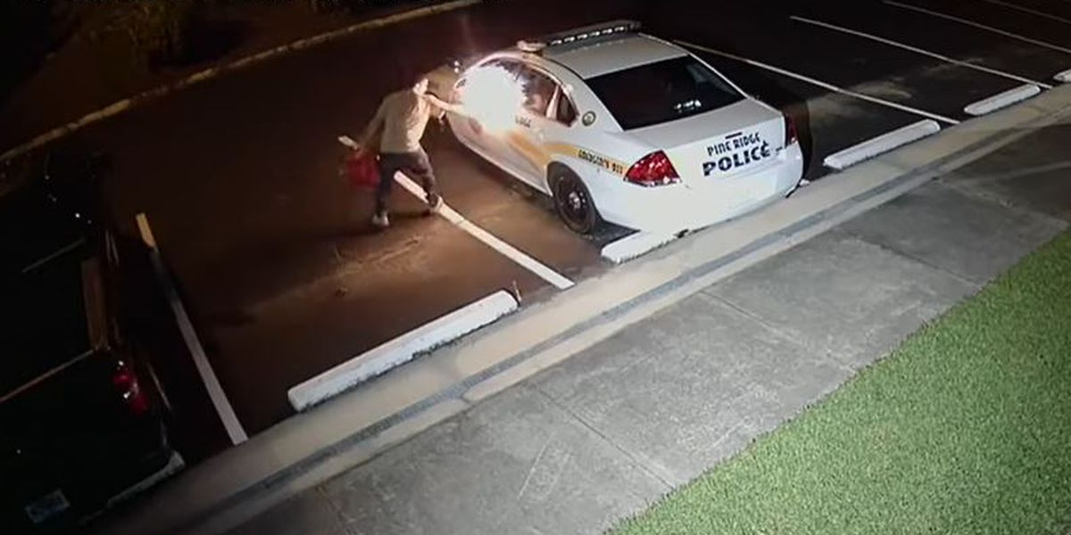 Caught on camera: Man dumps gasoline on South Carolina police car, sets it on fire at police station