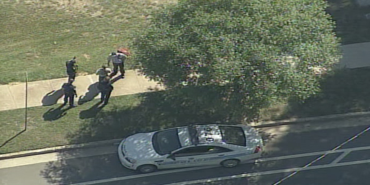 Police: Man jumped from stolen vehicle, ran across I-77