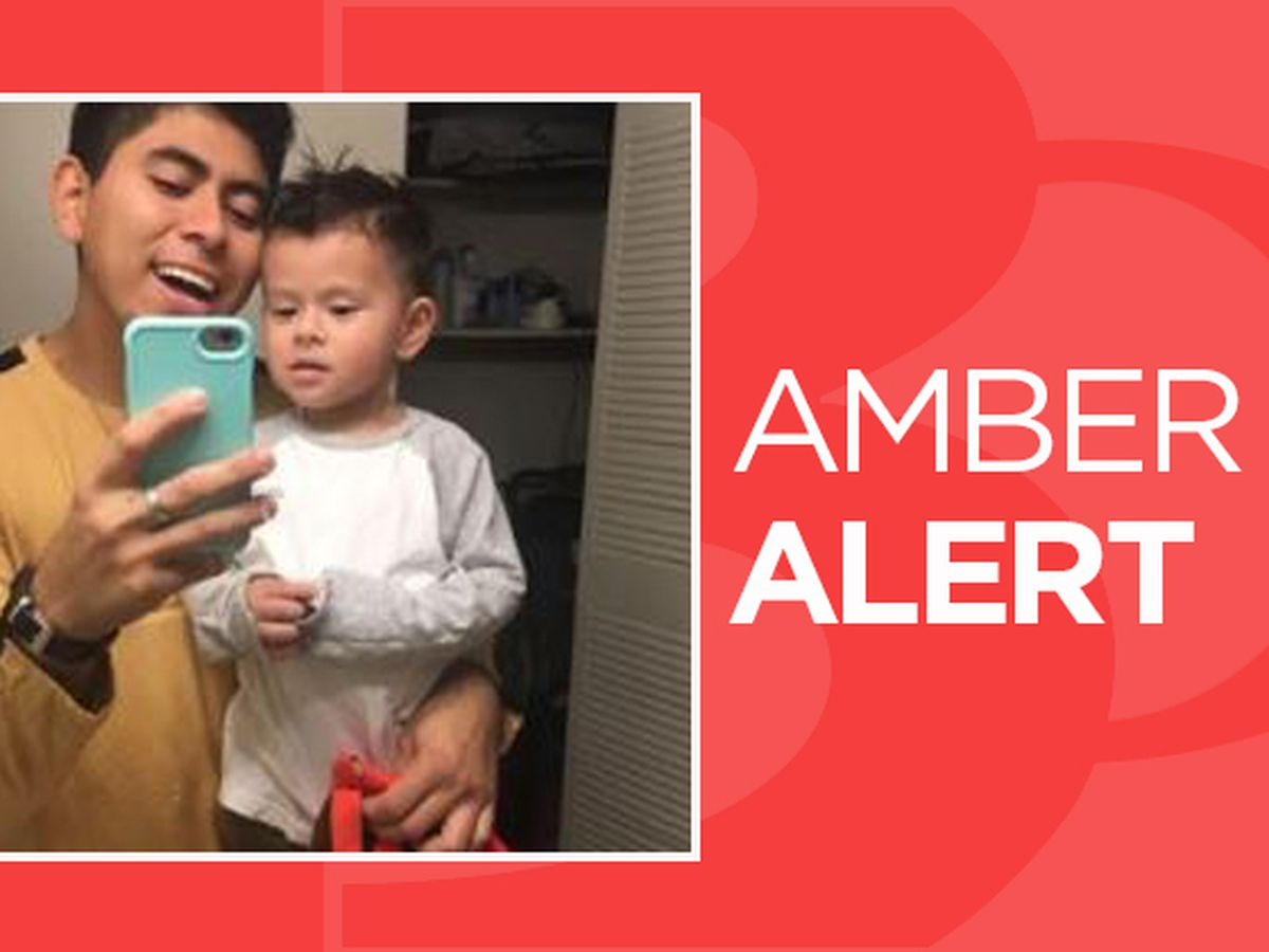 AMBER Alert: NC toddler abducted after mother stabbed