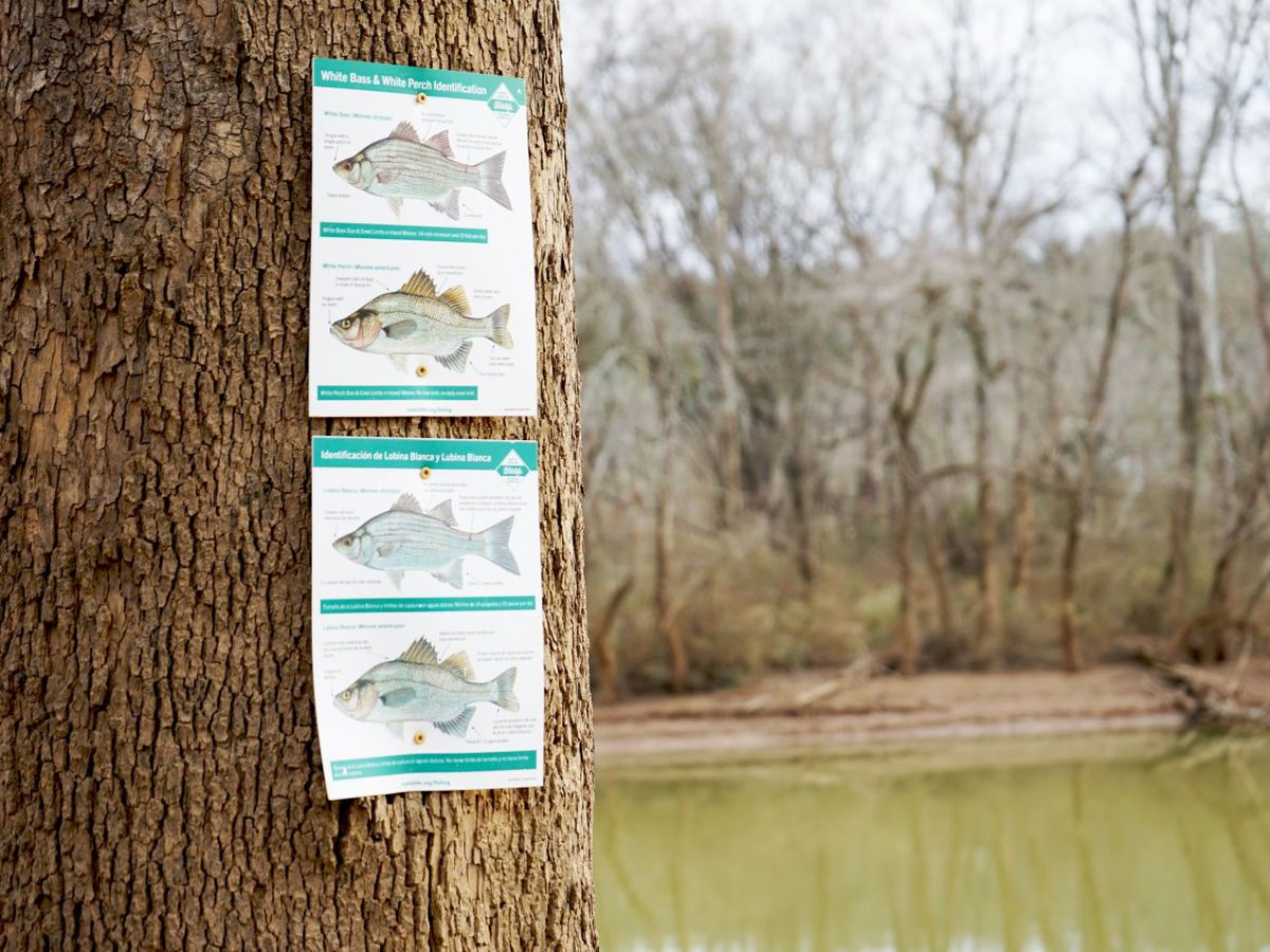 Public boating access area (BAA) made permanent by transfer from Three Rivers Land Trust to N.C. Wildlife Resources Commission