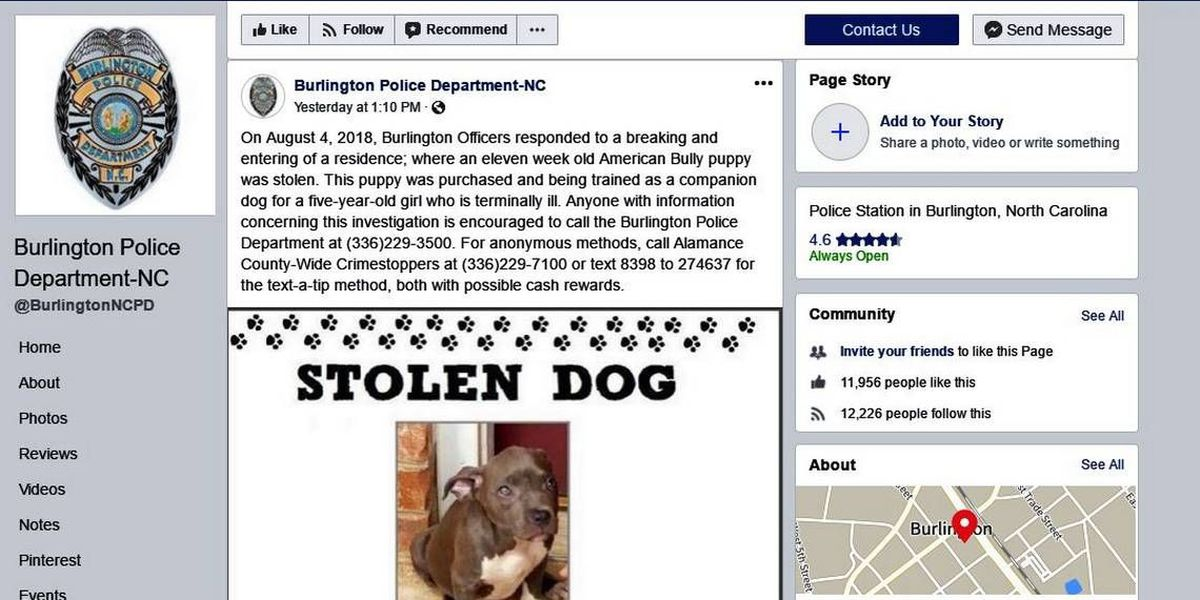 A terminally ill 5-year-old's puppy was stolen by burglars, NC cops say