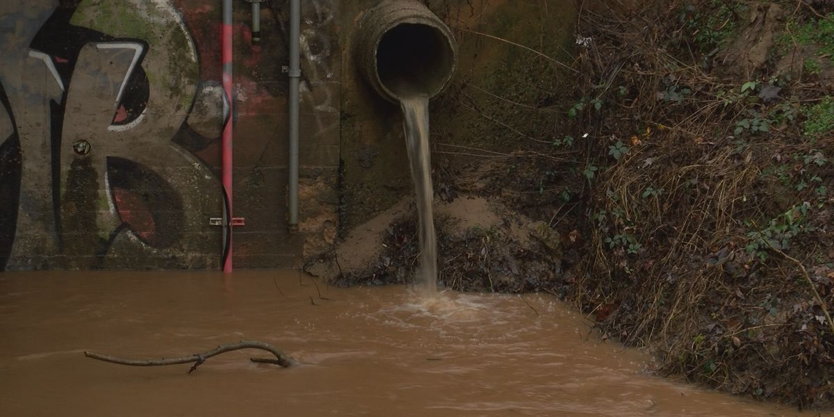 Parks and trails soaked with water in Mecklenburg County after heavy rains Friday afternoon