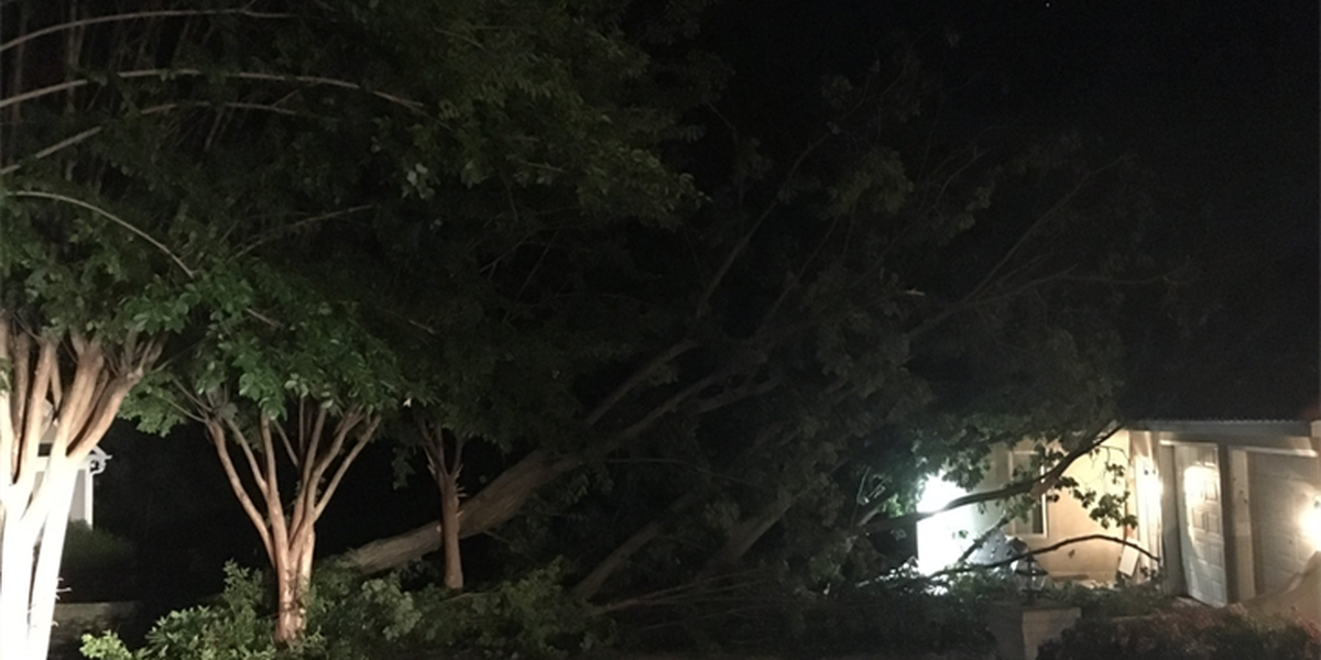 Severe storms bring down trees, cause power outages in several counties