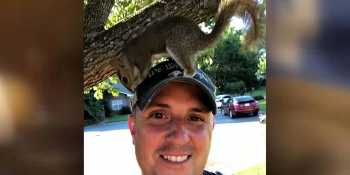 Paramedic rescues baby squirrel, the two become 'friends'