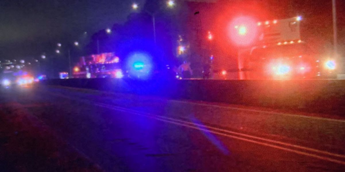 Pedestrian struck, killed on I-85 near University City Blvd