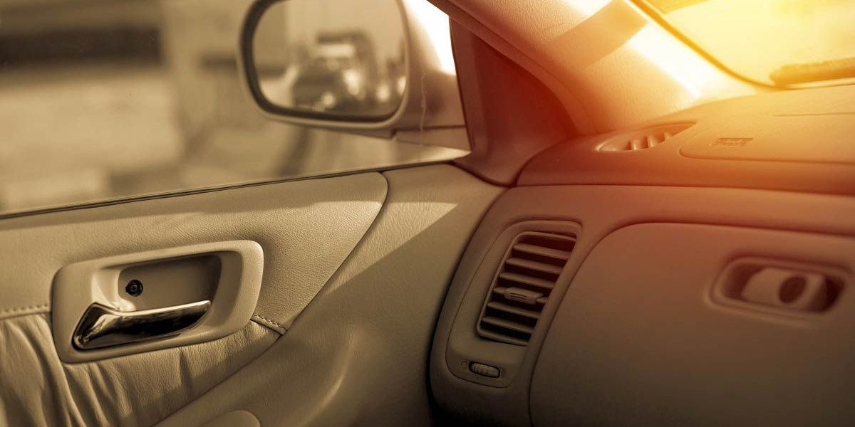 Do you know what NOT to leave in a hot car?