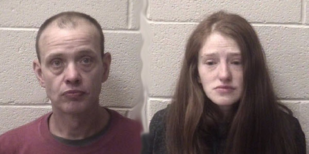 N.C. pair accused of animal cruelty after several dogs found dead or starving