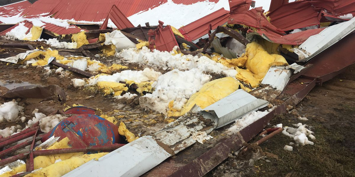 Arena collapses, kills horses during winter storm