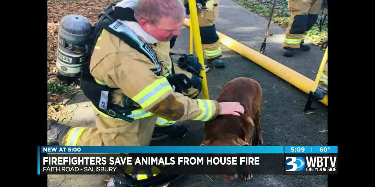 Firefighters save animals from house fire