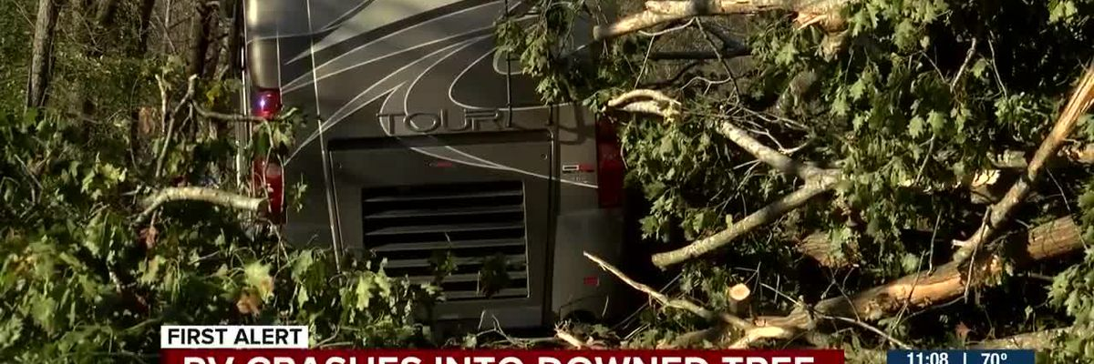 RV crashes into downed tree