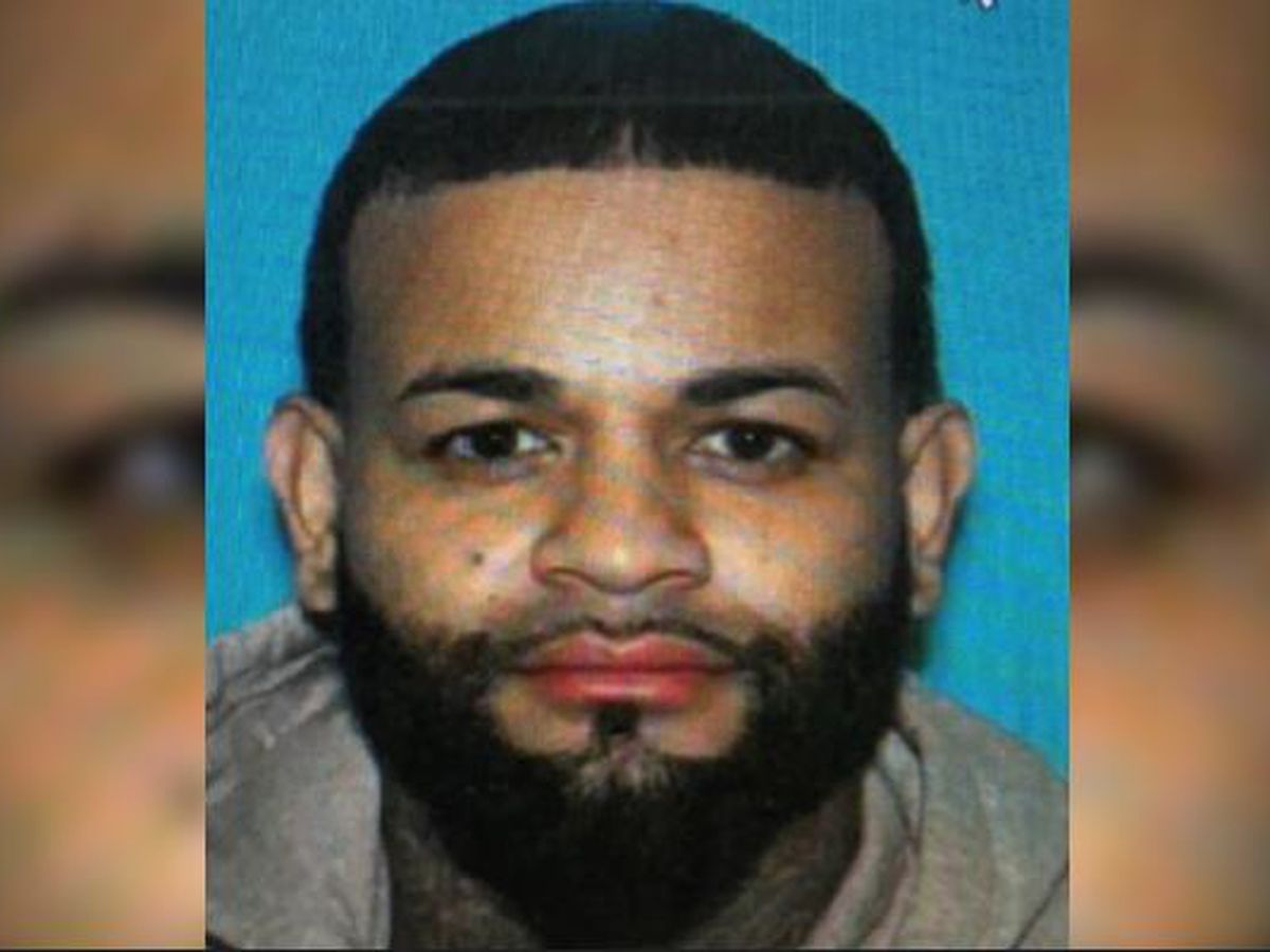 Driver being sought in shootout along Pineville highway