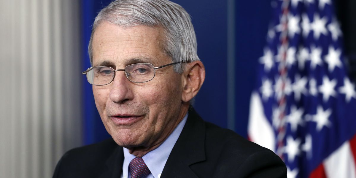 Fauci praises South Carolina's response to COVID-19 pandemic