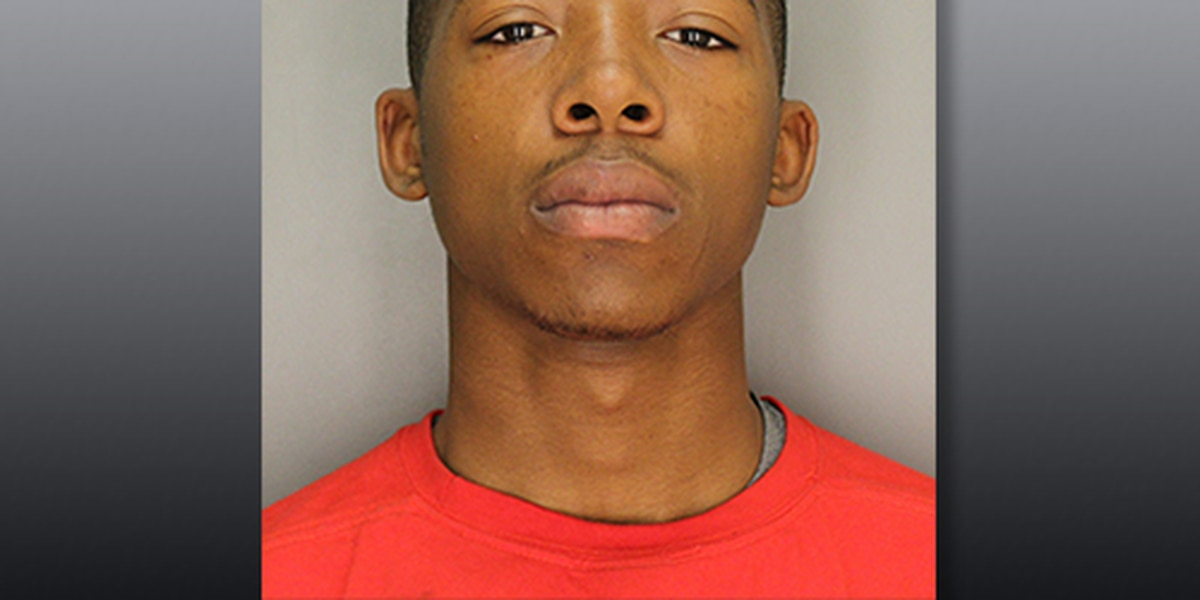 Teen accused of hitting woman in head with gun during Rock Hill robbery arrested