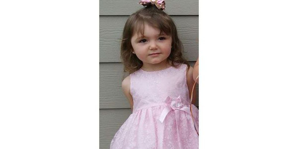 3-year-old SC girl ordered by judge to leave only family she's ever known