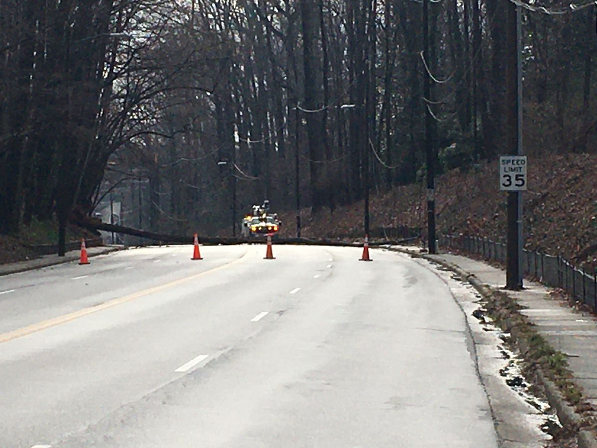 Large tree, downed power lines block part of road in southeast Charlotte