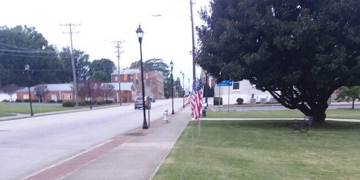 Veterans put out American flags in York for Purple Heart Day. Somebody stole them.