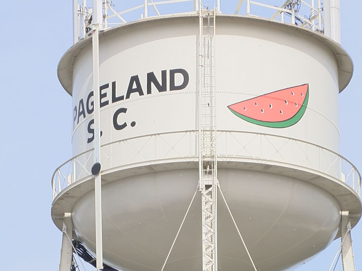 #PickPageland campaign hopes to revitalize the city's downtown